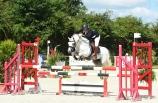 Adagio - CIR St Lô (Normandy Horse Show) - août 2016 - photo Pixel Events