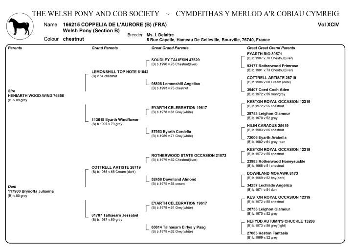 coppelia-pedigree