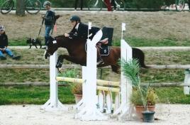 Coppelia de l'Aurore - Finale CCJPS 4 ans C Sologn'Pony 2016 (photo Maindru)