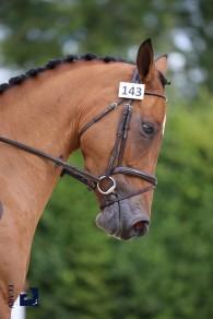 17/08/2017 ; Lamotte Beuvron ; Sologn'Pony ; 143, DONNA REGINA DE TWIN, LAISNEY Mathieu ; jeudi classique 4 ans d ; Agence Ecary