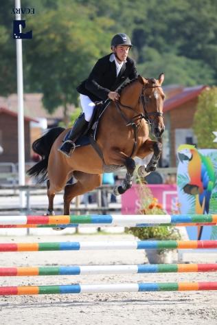 17/08/2017 ; Lamotte Beuvron ; Sologn'Pony ; 143, DONNA REGINA DE TWIN, LAISNEY Mathieu ; dimanche classique 4ansd ; Agence Ecary